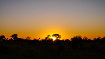 Stunning Sunrise in Botswana